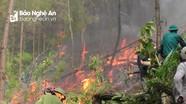 Cháy rừng lan từ Yên Thành sang Đô Lương, cả ngàn người dập lửa