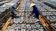 Làng nghề biển Quỳnh xứ Nghệ hối hả vào vụ Tết