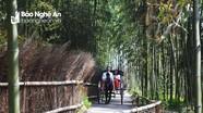 Từ rừng trúc Nhật Bản nghĩ về các vùng du lịch sinh thái xứ Nghệ