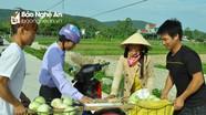 Chú trọng tuyên truyền, xây dựng Hoàng Mai trở thành cực tăng trưởng kinh tế của tỉnh
