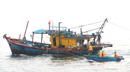 Nghệ An: Xử lý nhiều hoạt động vi phạm khai thác thủy sản ven bờ