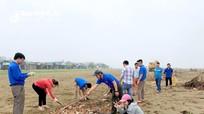 400 đoàn viên thu dọn rác biển Diễn Thành