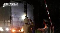 Trắng đêm kiểm dịch tả lợn châu Phi ở Nghệ An