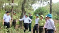 Tập huấn nâng cao công tác quản lý rừng bền vững tại các địa phương