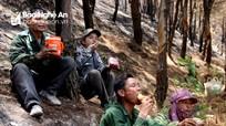 Nắng như thiêu, người dân Nghệ An ăn vội mì tôm khô trực cháy giữa rừng