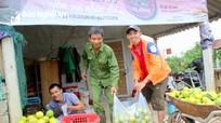 Cam Vinh vào chính vụ thu hoạch, thu 400 triệu đồng/ha