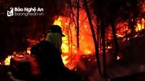 Nghệ An triệu tập các đối tượng phục vụ điều tra nguyên nhân gây cháy rừng