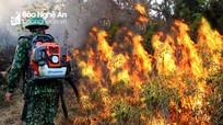 Nghệ An ra công điện khẩn, yêu cầu điều tra, truy tìm thủ phạm gây ra vụ cháy rừng