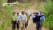 Thứ trưởng Bộ Nông nghiệp kiểm tra công tác phòng cháy chữa cháy rừng tại Nghệ An