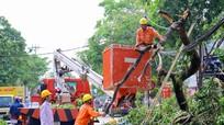 Cử tri mong muốn ngành điện chú trọng nâng cấp hạ tầng lưới điện nông thôn