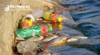 Ô nhiễm 'kép' đang 'bức tử' môi trường hồ điều hòa ở TP.Vinh