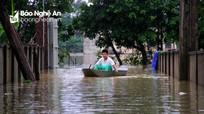 Nước sông Lam dâng cao, hàng trăm hộ dân Hưng Nguyên (Nghệ An) bị cô lập
