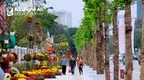 TP. Vinh sẽ chạy thử phố đi bộ trước Tết Âm lịch 2021