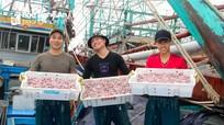 Nghệ An: Hải sản, rau xanh tiêu thụ mạnh, thịt ế ẩm