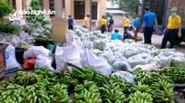 Huyện Quỳnh Lưu hỗ trợ 10 tấn rau, củ cho người dân TP. Vinh
