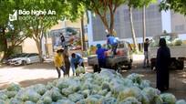 Tiếp tục hỗ trợ hàng tấn rau củ cho người dân TP.Vinh trong mùa dịch