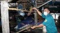 TP Vinh thẩm định lại các chợ, tiểu thương lo lắp vách ngăn, tấm chắn giọt bắn