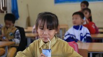 Cần đảm bảo tính công khai, minh bạch cho ly sữa học đường