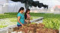Diễn đàn hợp tác công tư chia sẻ kinh nghiệm về phát triển nhân lực nông thôn