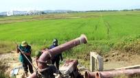 Thủ tướng Nguyễn Xuân Phúc yêu cầu khẩn trương hỗ trợ Nghệ An chống hạn
