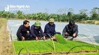 Lãnh đạo tỉnh kiểm tra sản xuất nông nghiệp tại các địa phương