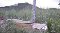 Vụ 4 người tử vong ở Quỳ Hợp (Nghệ An): Do vi phạm khoảng cách an toàn lưới điện