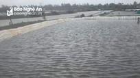 Đi câu cá sau bão, học sinh lớp 4 bị đuối nước