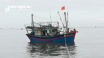 Tàu cá cùng 16 ngư dân Nghệ An gặp nạn khi tránh bão số 4