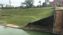 Tìm kiếm cô gái nghi nhảy cầu tự tử ở Nghệ An