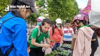 """Giới trẻ thành Vinh hào hứng với chương trình """"đổi giấy lấy cây"""""""