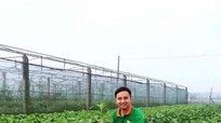 TP. Vinh đầu tư 2 tỷ đồng sản xuất nông nghiệp sạch