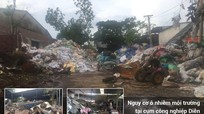 Cử tri Diễn Châu bức xúc vì ô nhiễm môi trường quanh Cụm công nghiệp Diễn Hồng