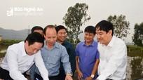 Bí thư Tỉnh ủy Nghệ An yêu cầu các địa phương ký cam kết tiến độ GPMB dự án đường bộ cao tốc Bắc-Nam