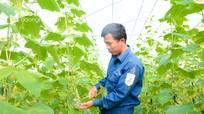 Thường trực HĐND tỉnh Nghệ An đề xuất bãi bỏ các nghị quyết không phát huy hiệu quả