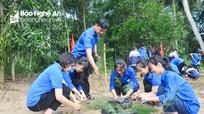 Tuổi trẻ Nghệ An sôi nổi tham gia Ngày Chủ nhật xanh toàn quốc