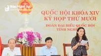 Đại biểu Quốc hội tỉnh Nghệ An tham gia thảo luận Luật Xử lý vi phạm hành chính