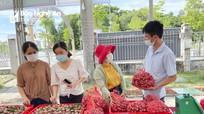 Hội Nông dân tỉnh Nghệ An kết nối tiêu thụ nông sản trong mùa dịch