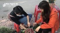 Sinh viên Nghệ An bán hoa gây quỹ ủng hộ trẻ em nghèo vùng cao