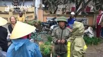 Ra Tết, nông dân bán mạ thu tiền triệu