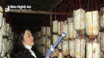 Phụ nữ bản Thái trồng nấm sò trắng cho thu nhập cao
