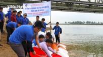 Đại học Vinh thả hơn 1 tạ cá giống xuống sông Lam