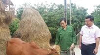 Nghệ An: Doanh số cho vay các đối tượng chính sách tăng 7%