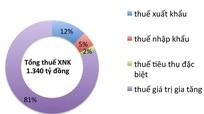Nghệ An: Thuế xuất nhập khẩu tăng 29%