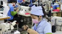 Chủ tịch VCCI Việt Nam: Nghệ An cần phải có chiến lược phát triển kinh tế tư nhân