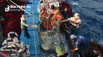 Cần tăng cường cơ chế, chính sách giúp ngư dân vươn khơi