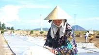 Nghệ An: Nắng nóng cao độ, diêm dân tích cực vào vụ