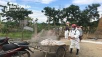 Đô Lương tái xuất hiện 2 ổ dịch tả lợn châu Phi