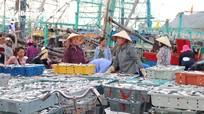 Về tránh gió mùa, tàu thuyền ở Nghệ An mang theo nhiều hải sản