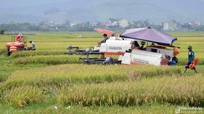 Xây dựng nền nông nghiệp hiện đại, thích ứng với biến đổi khí hậu