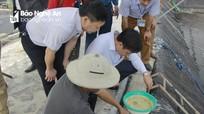 Nông dân Nghệ An bắt đầu xuống giống vụ nuôi tôm chính